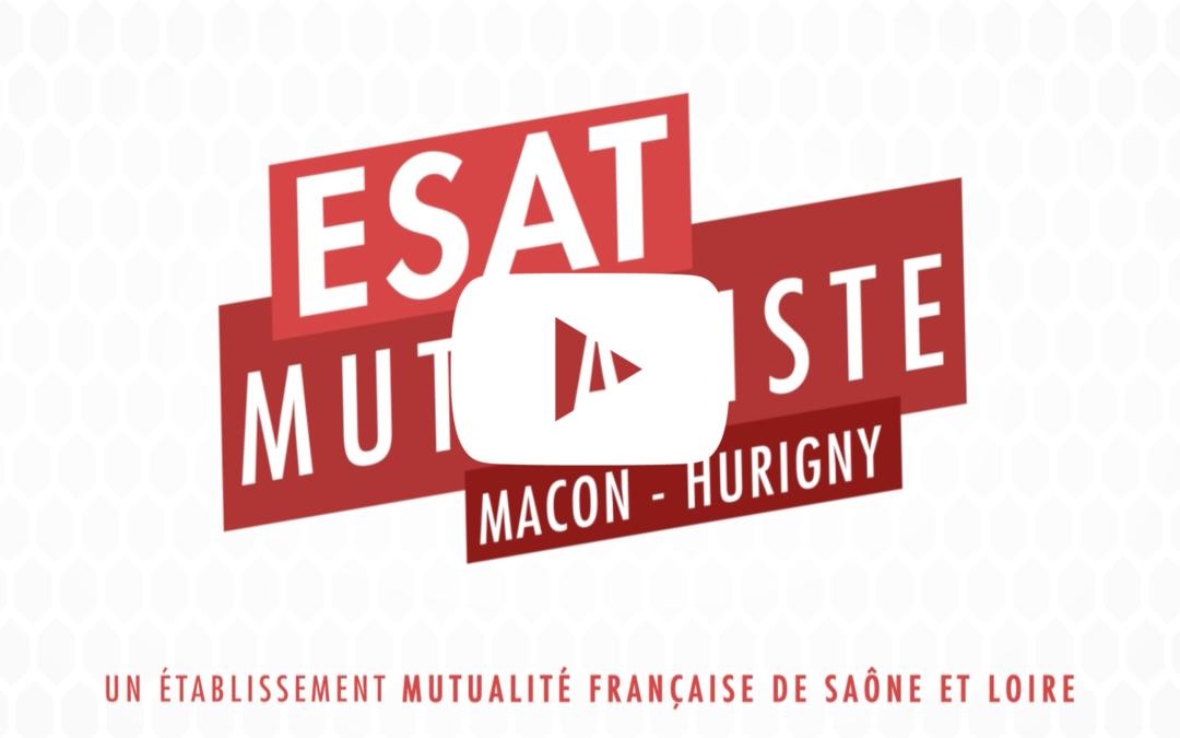 ESAT Mutualiste : quelles prestations aux entreprises ?